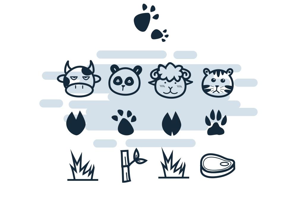 Animal Footprints example image 3
