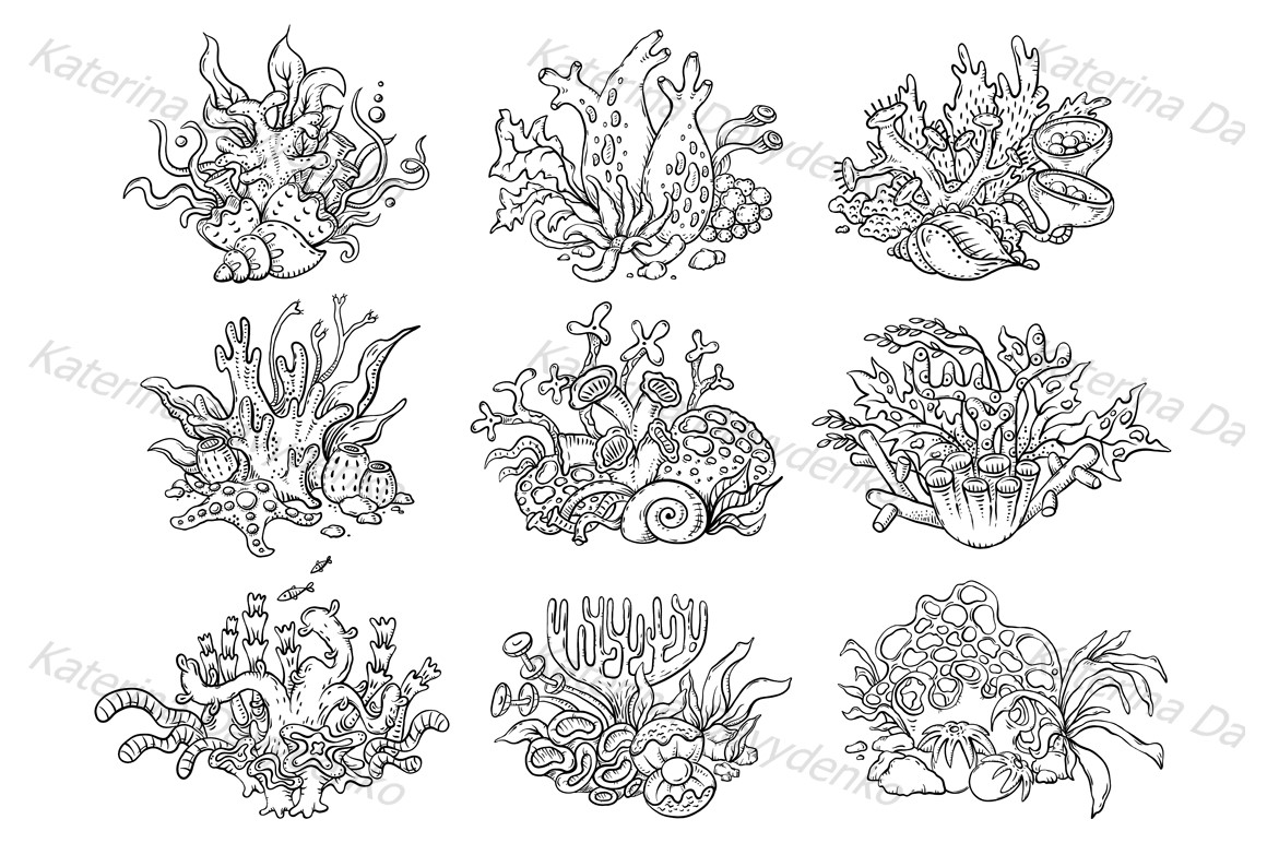 A set of colorful corals, sea and ocean life example image 2