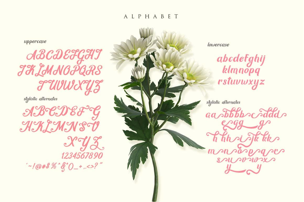 Mon Cheri Typeface + Extras example image 5