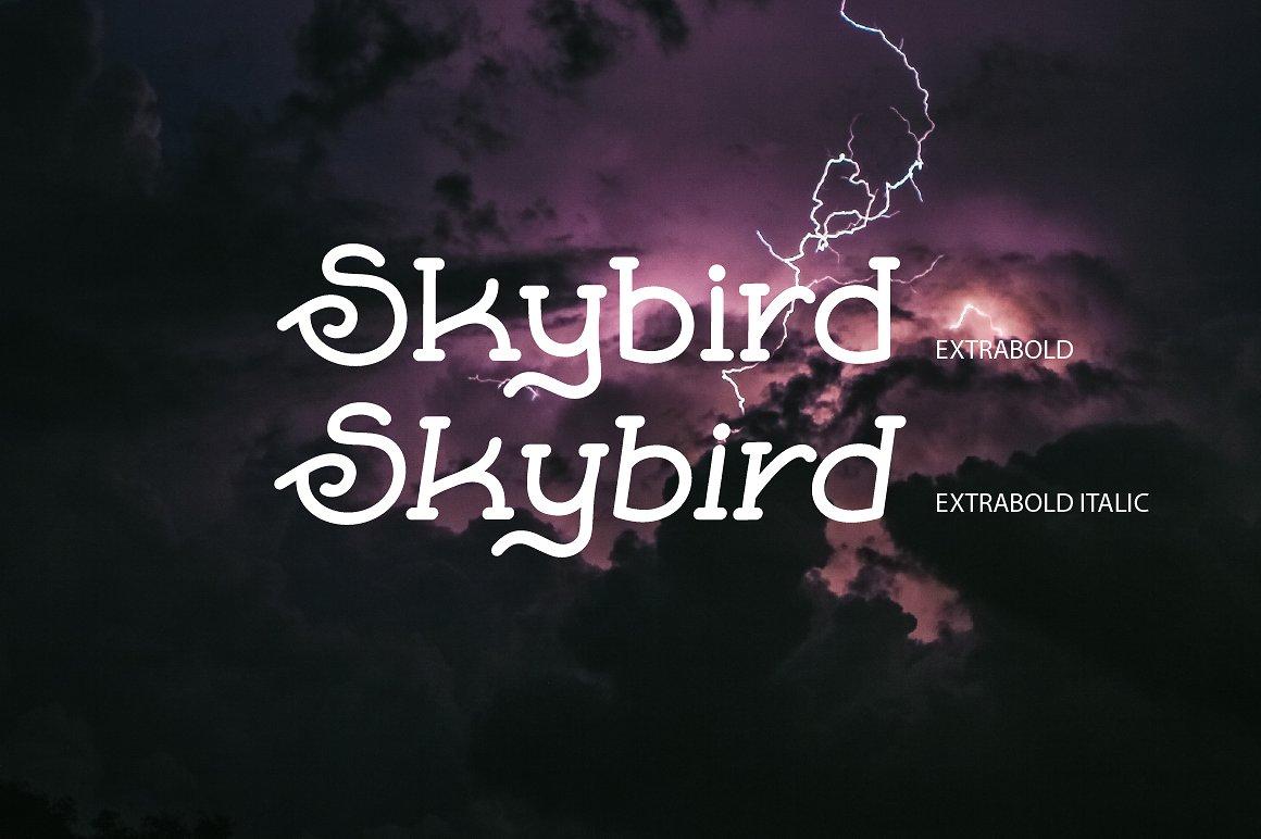 Skybird Family - Crazy, unique & retro example image 6