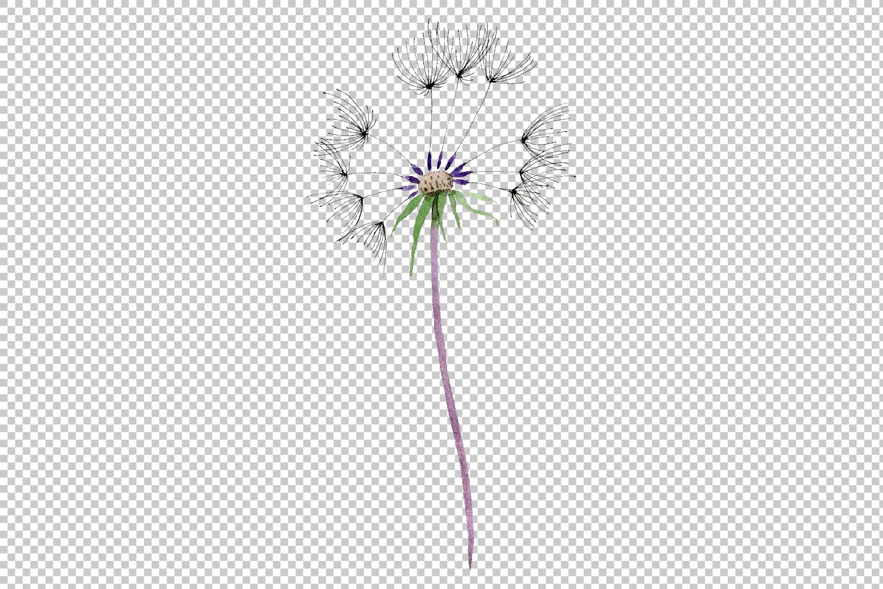 Bouquet rainbow dandelion watercolor png example image 7