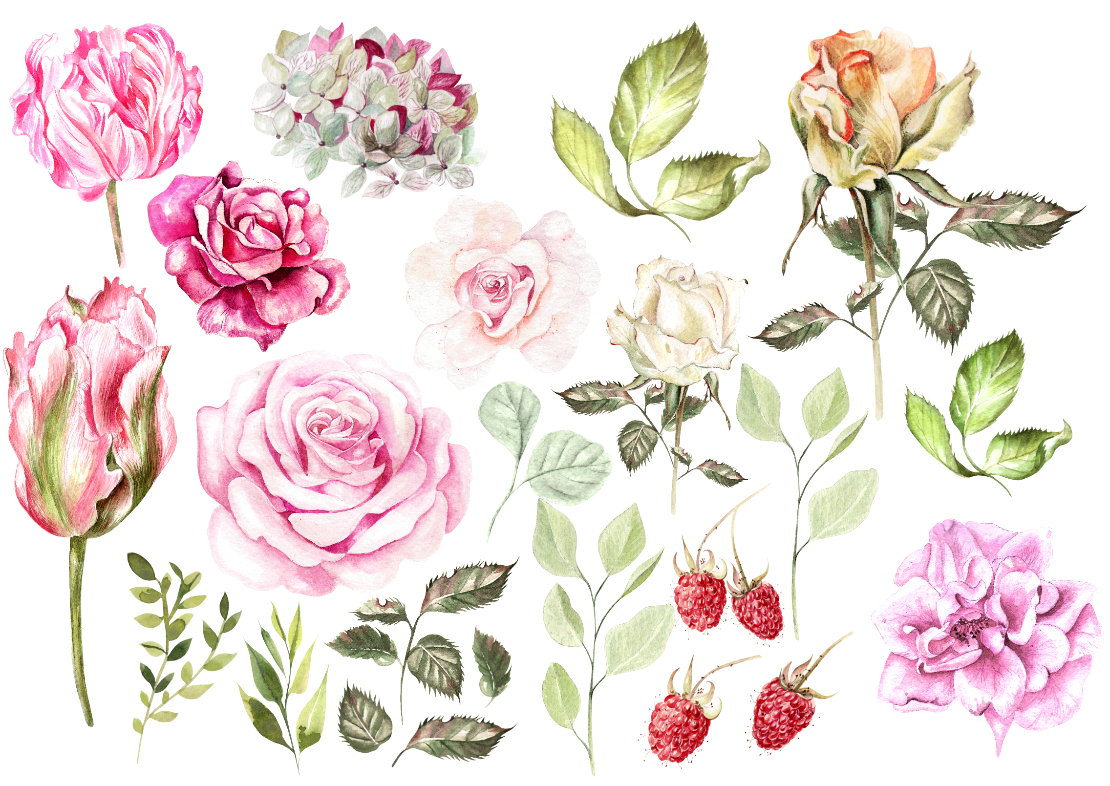 Hand Drawn Watercolor BUNDLE example image 5