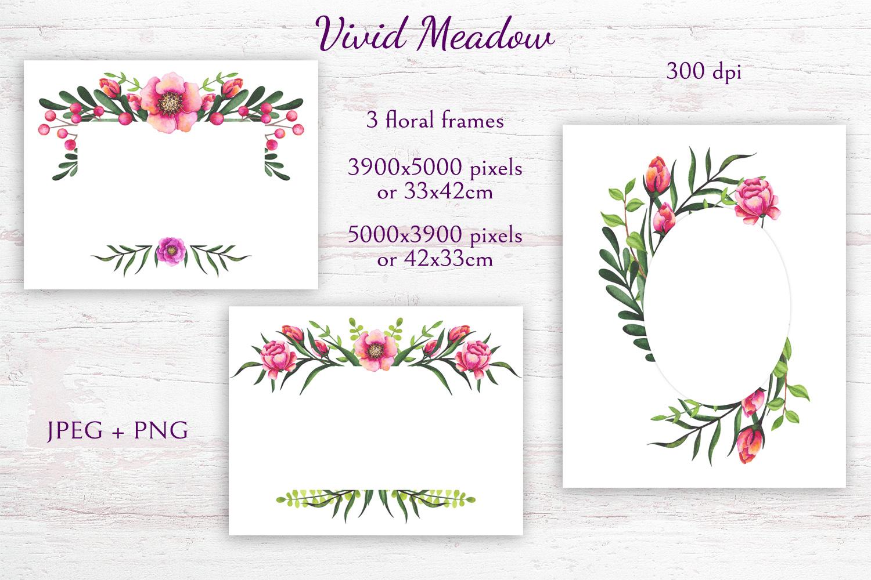 Vivid Meadow example image 7