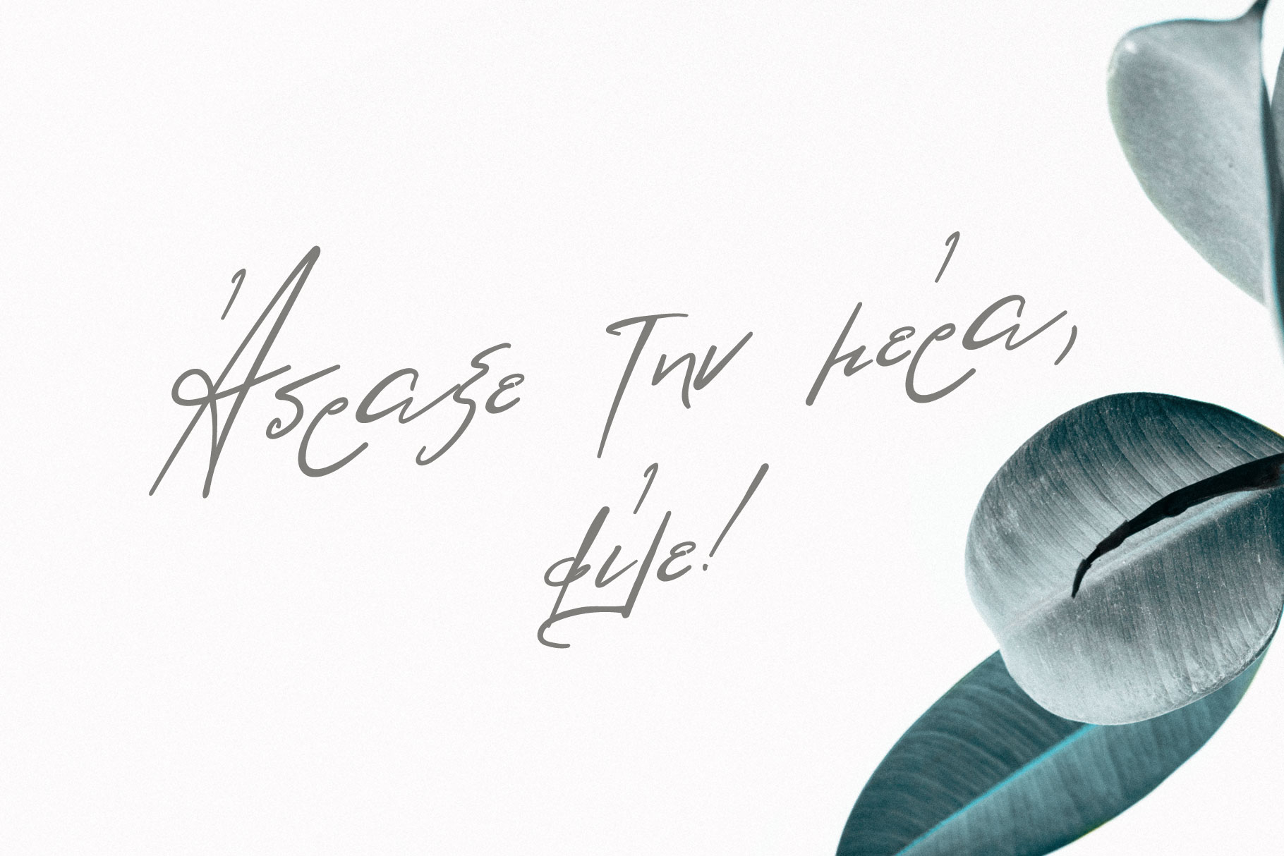 Lolotte Multilingual Signature Font example image 9