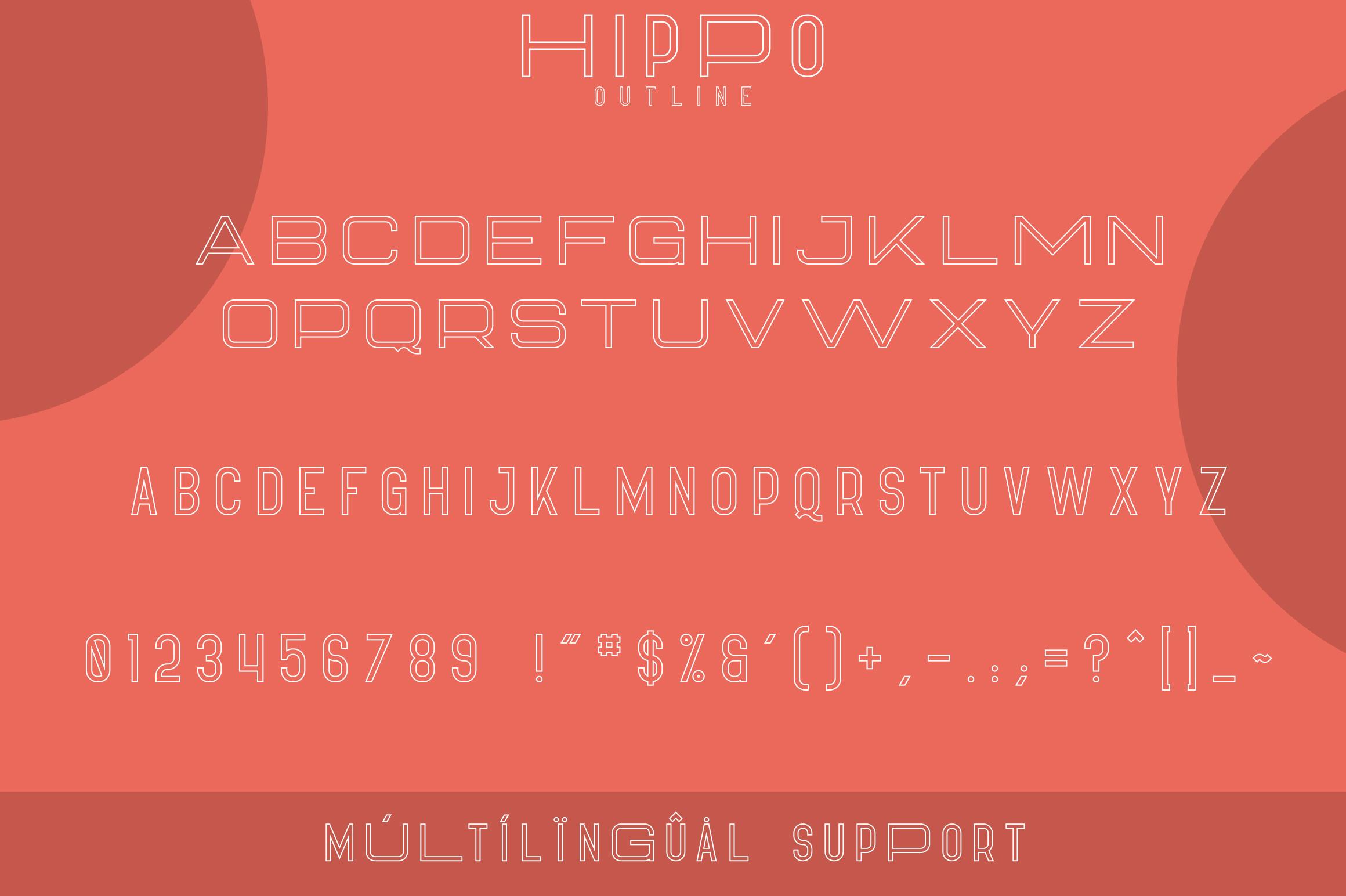 Hippo Sans Serif | 3 styles example image 8