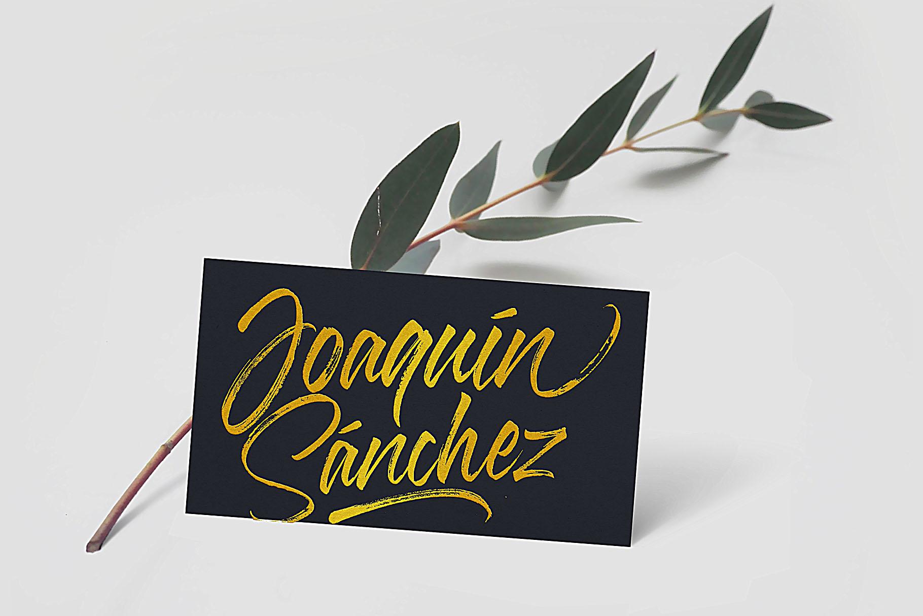 Fudelines Brush font example image 7