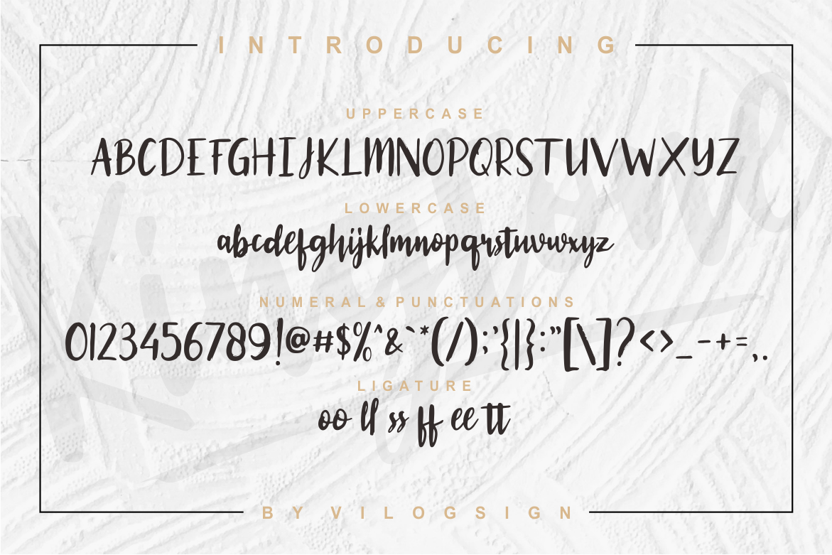 Kingtone // Handcrafted Script Font example image 4