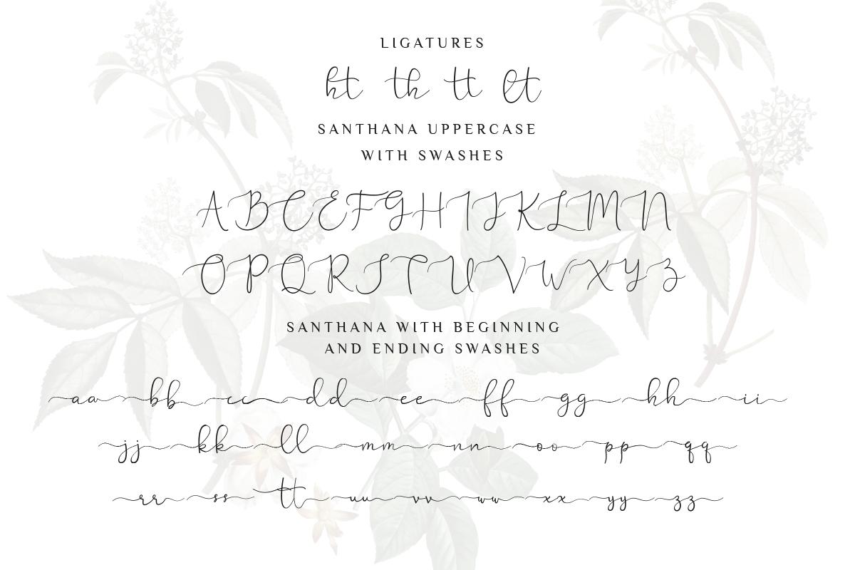 Santhana Lovely Script Font example image 9