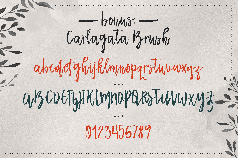 Carlagata example image 5