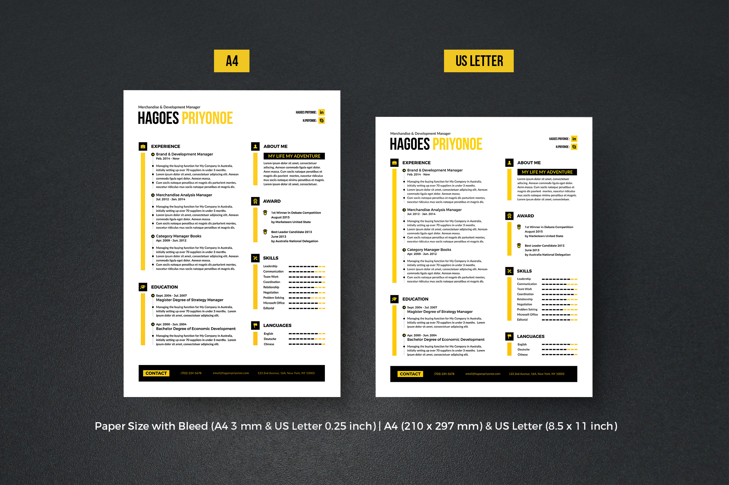 Resume example image 4