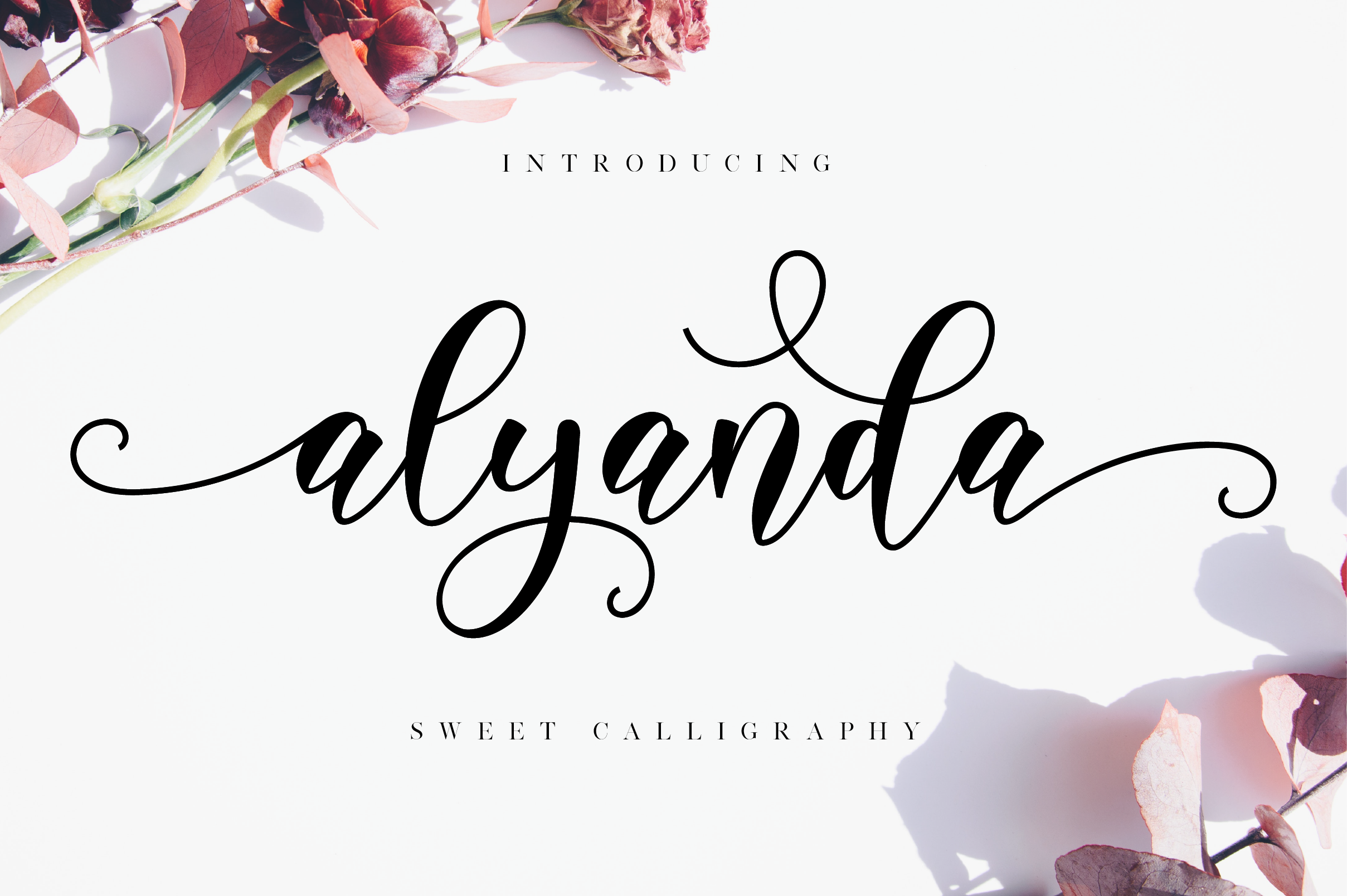 Spectacular Fonts Bundle example image 7