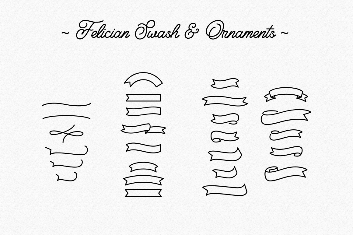 Felician Monoline Script example image 6