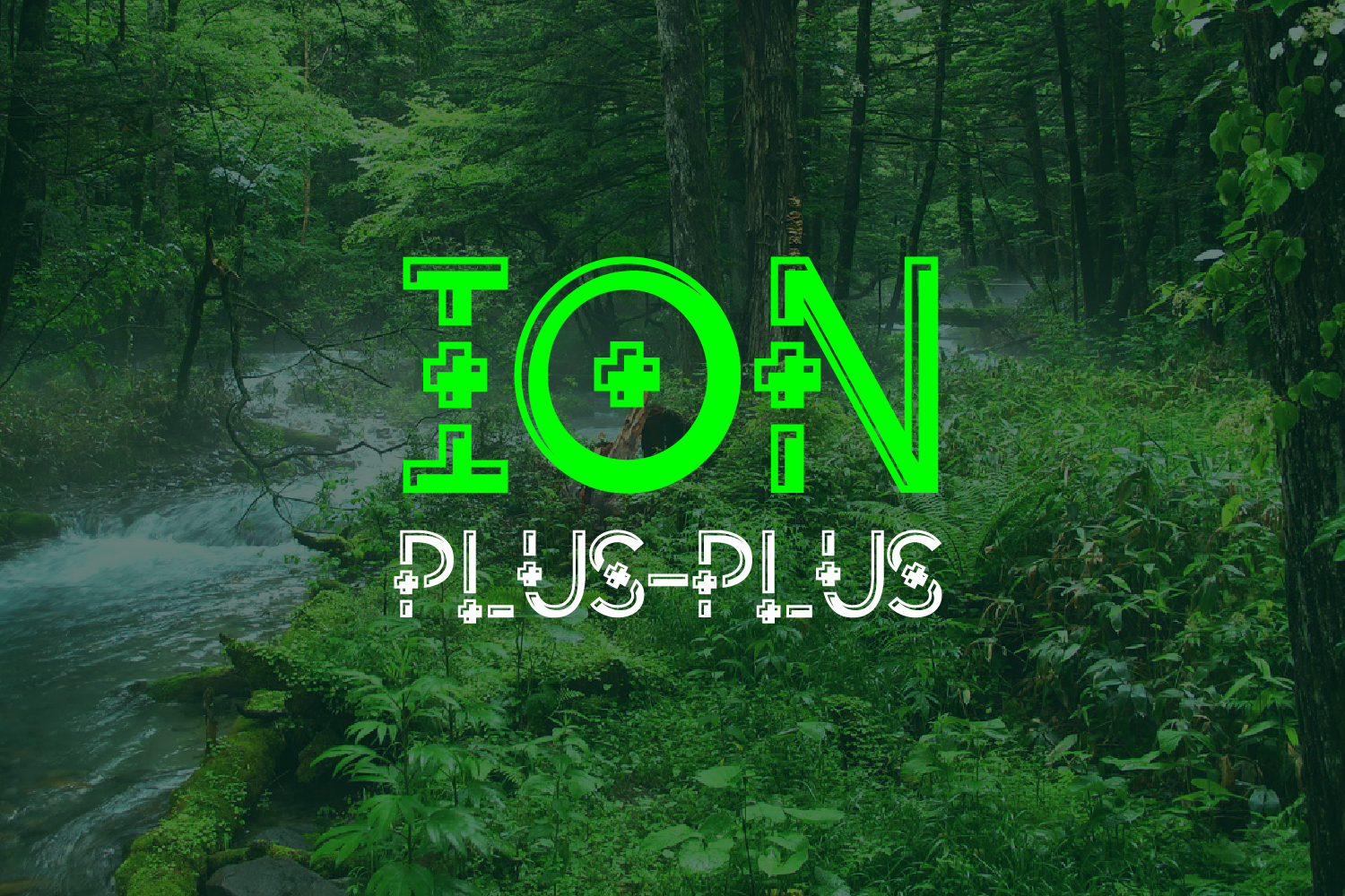 ION PLUS example image 4