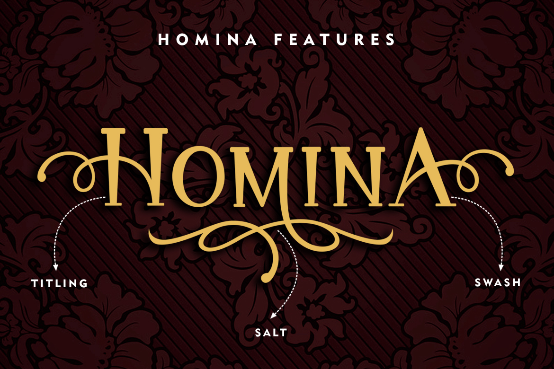 Homina example image 3