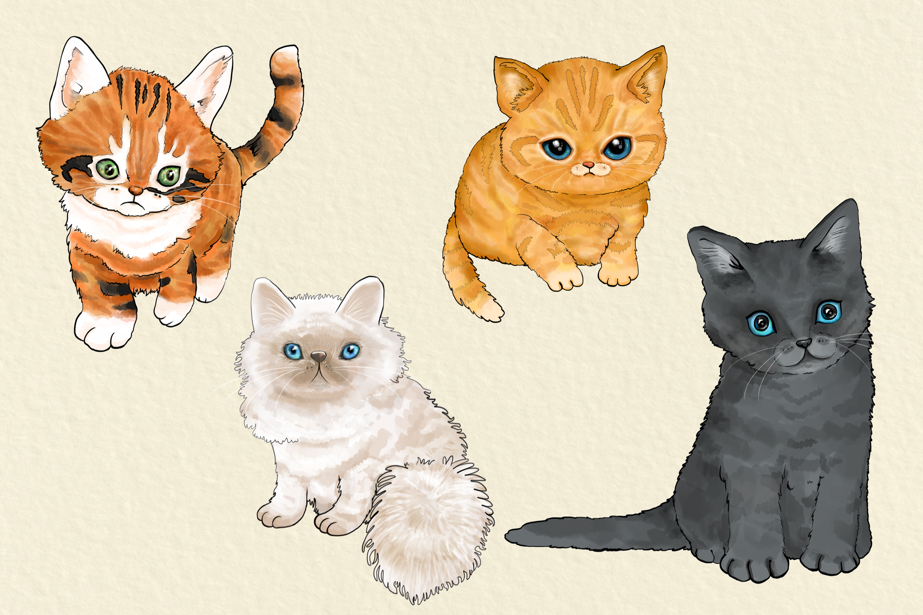 CATS | 20 Assorted PNG Clip Art Illustrations example image 4