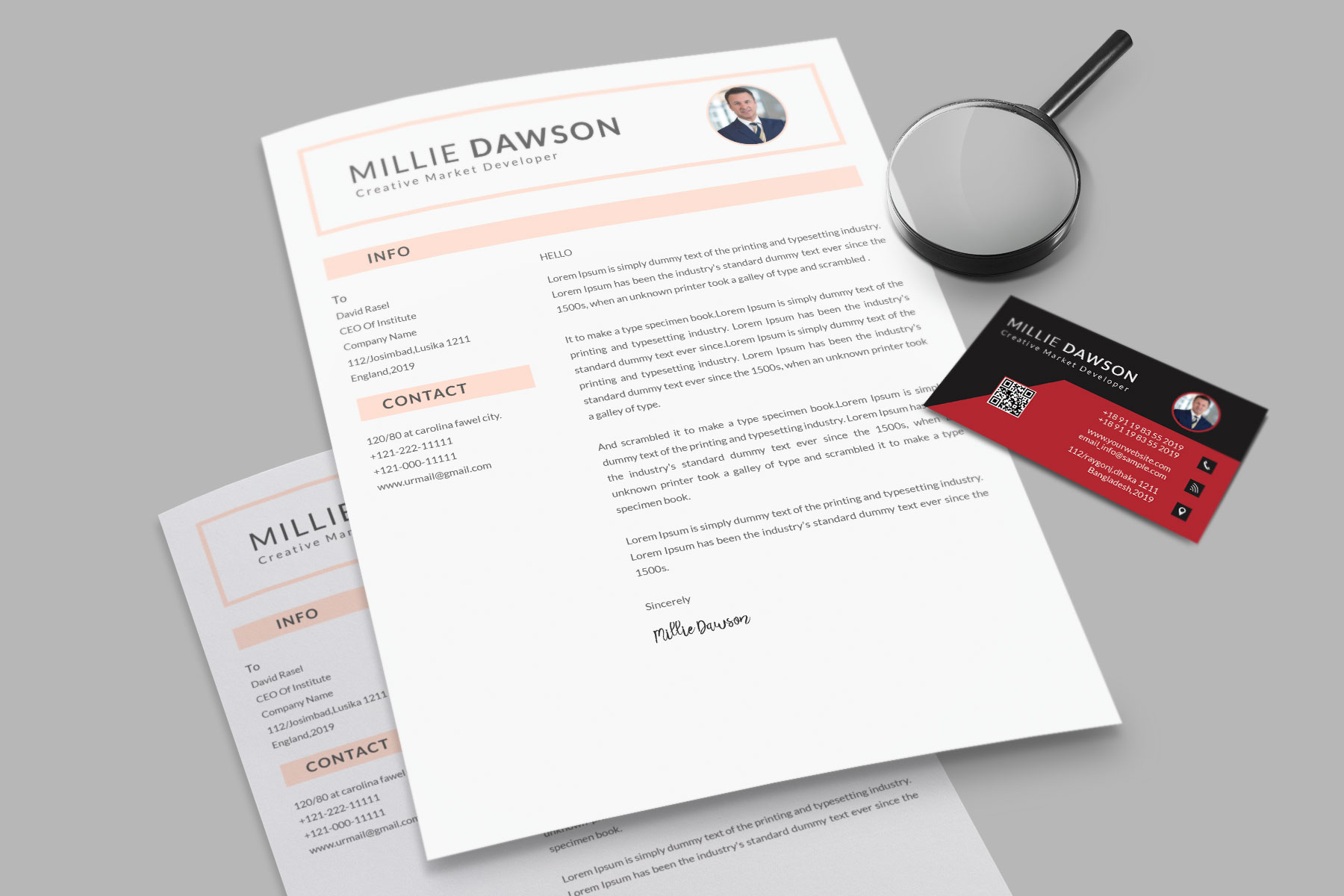 Professional Cv Resume Bonus business card Word/PSD,AI example image 13