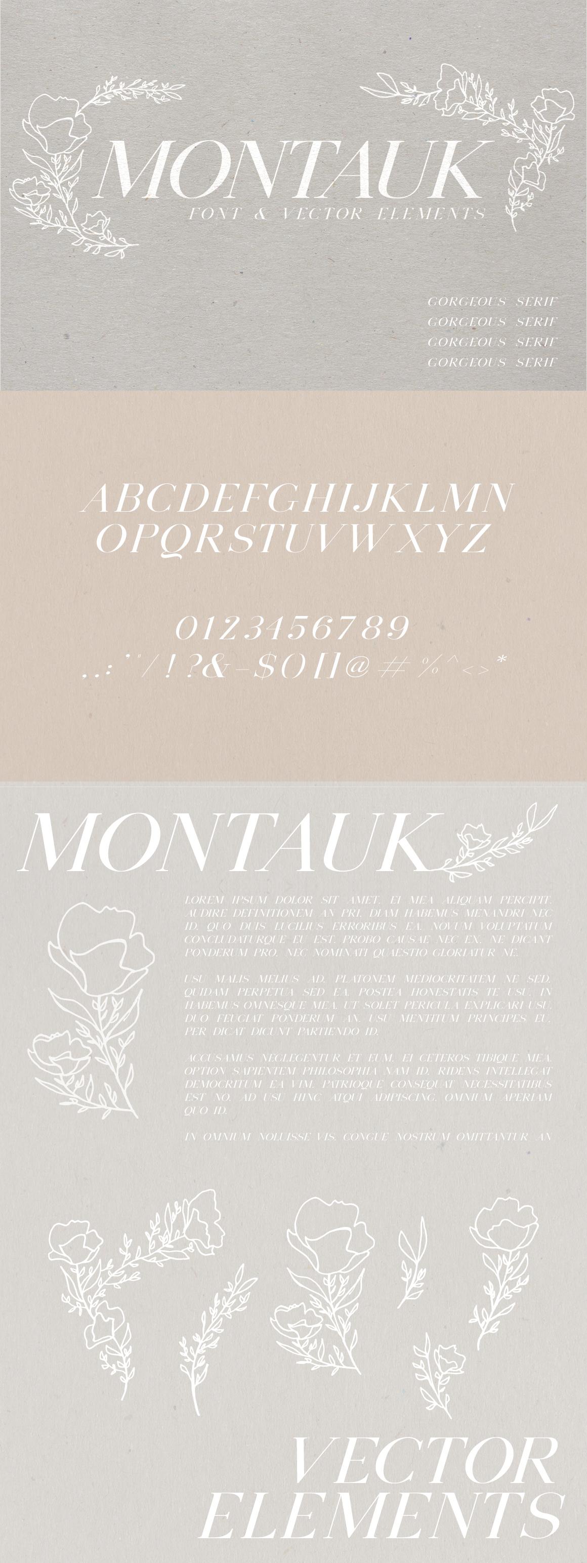 Montauk | Serif + Bonus Vectors example image 5