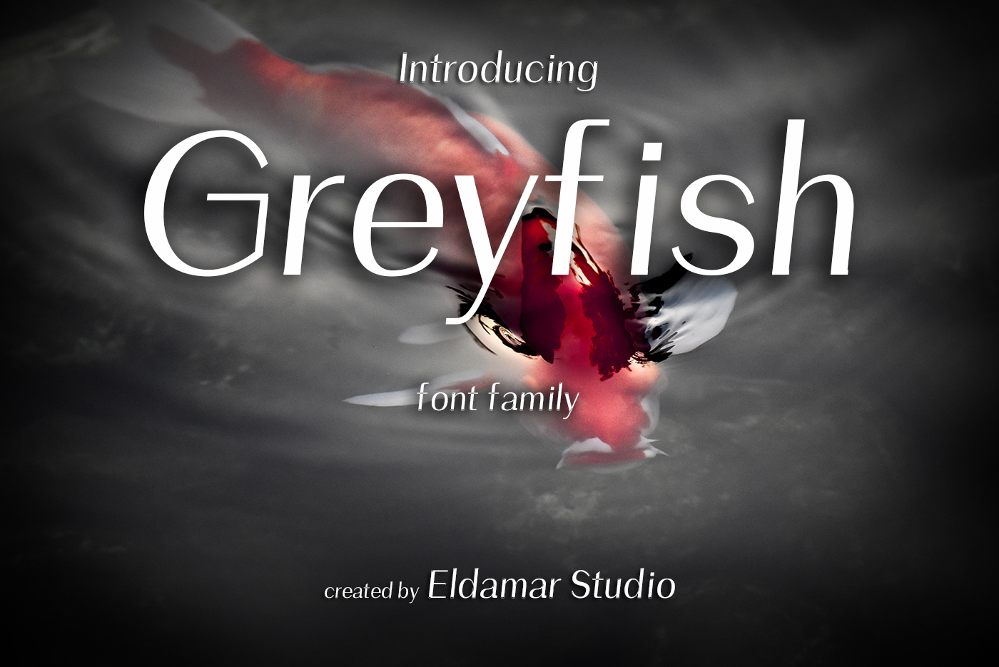 Greyfish Font example image 1
