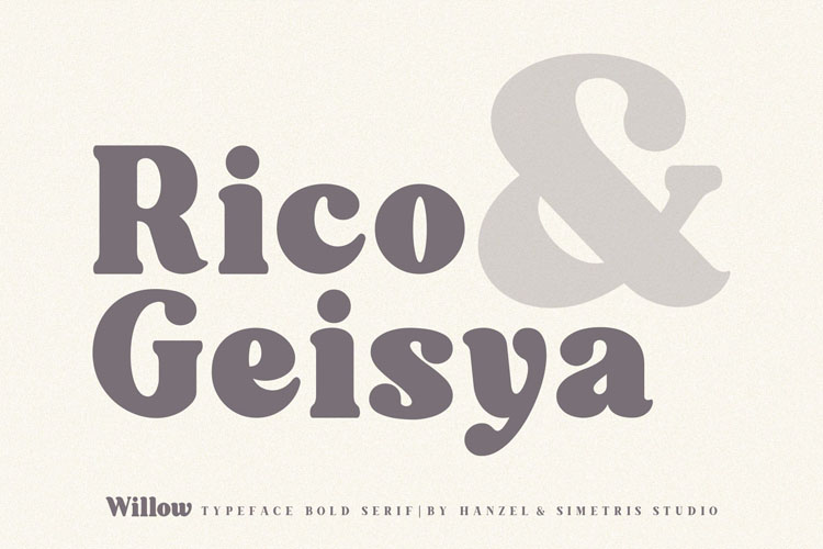 Willow. Typeface Bold Serif example image 8