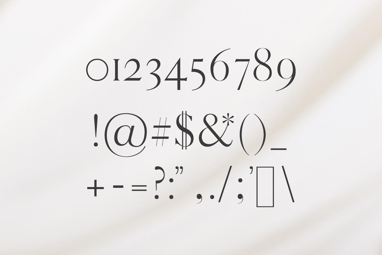 Warick Serif Font Family example image 6