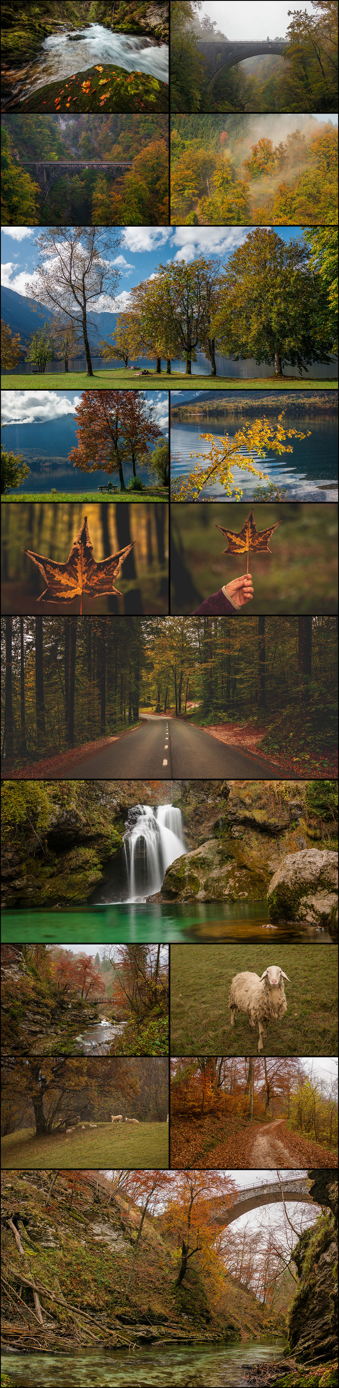 Ultimate Photo Bundle 2016 from DreamyPixel – 700+ Images example image 5