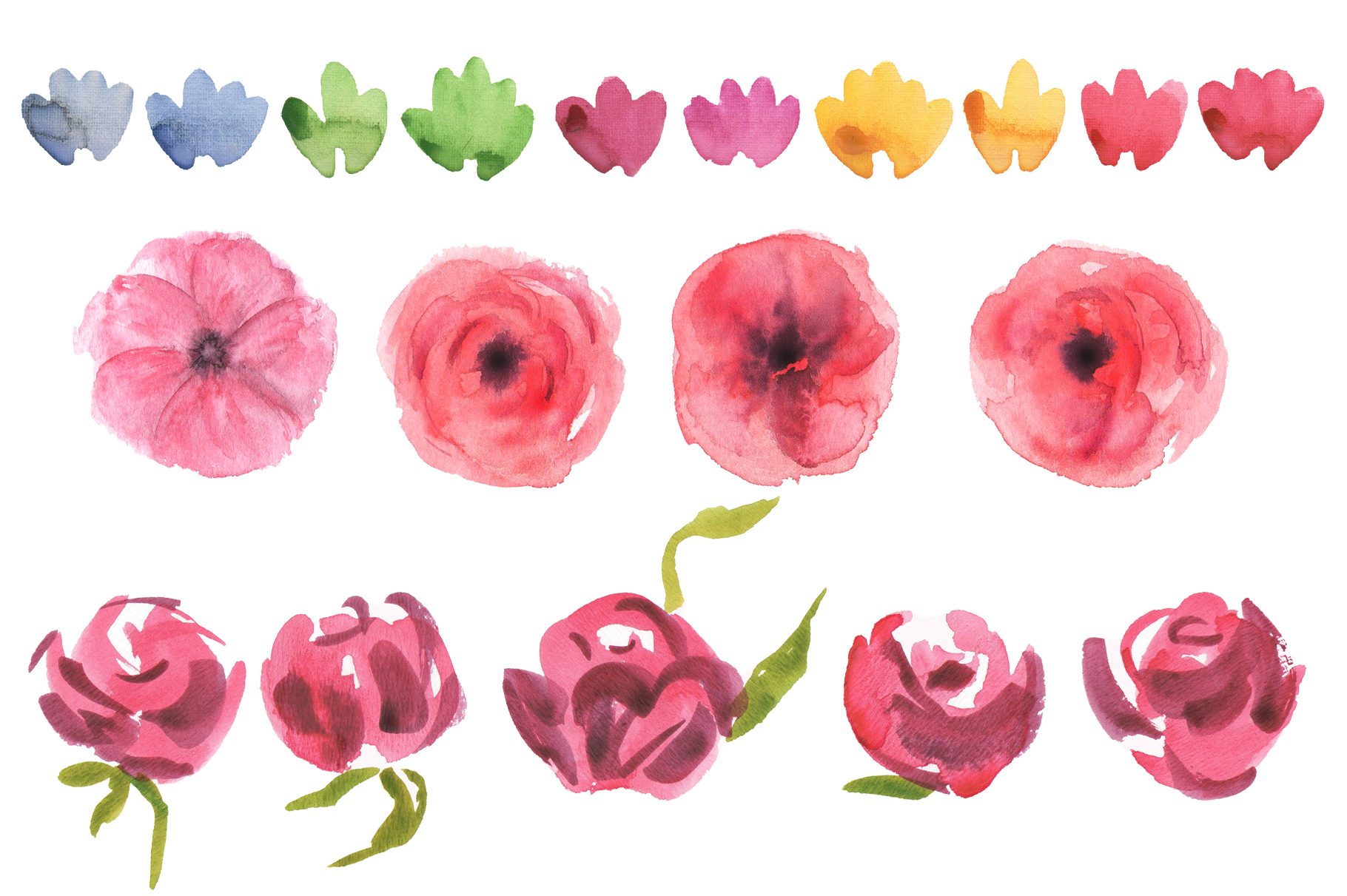 Queen of Flowers watercolor collection example image 3