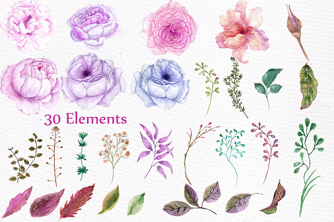 Watercolor peonies flowers clipart example image 2