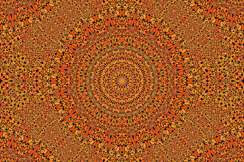 48 Seamless Floral Mandala Patterns example image 17