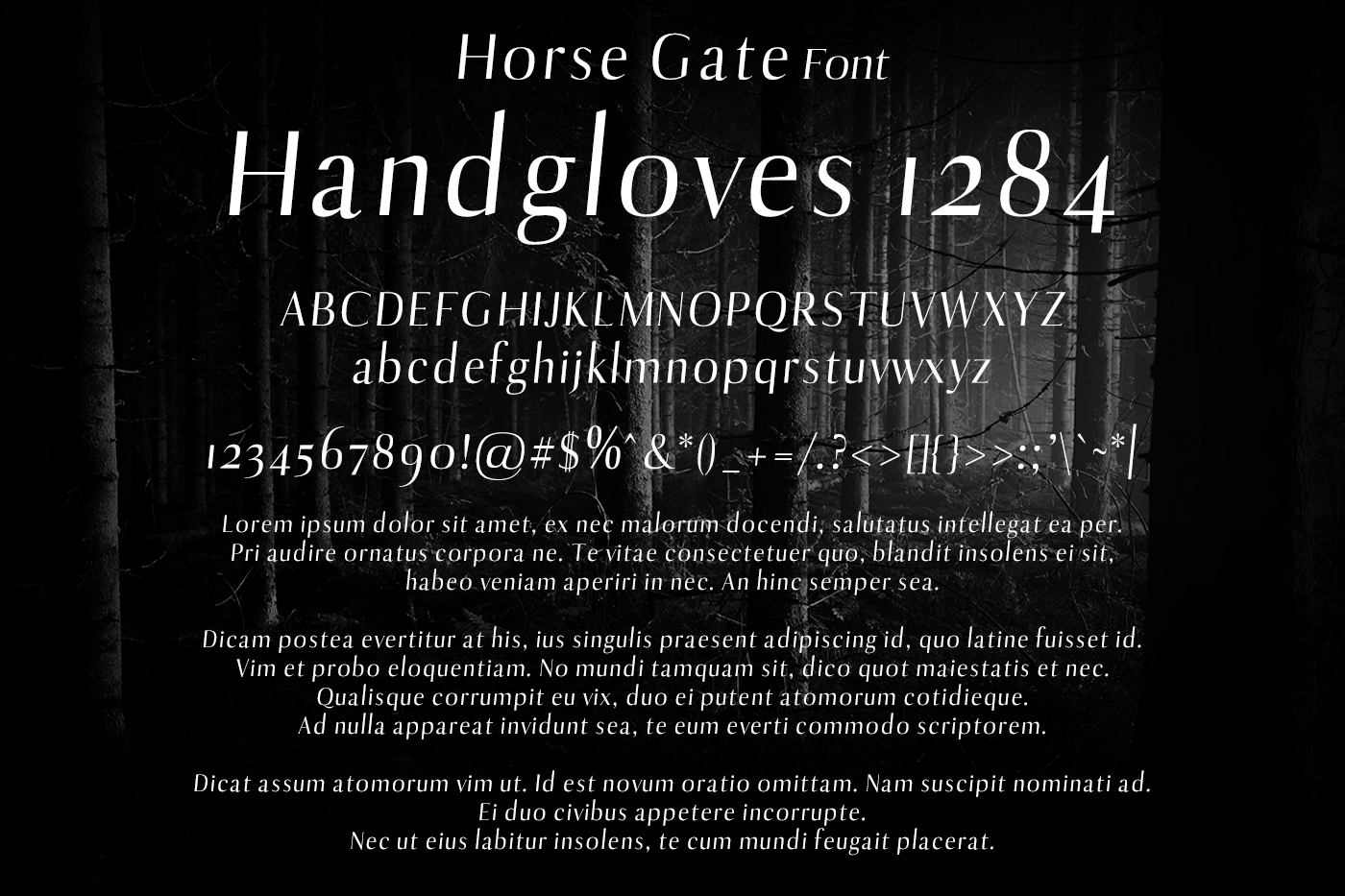 Horse Gate Font example image 2