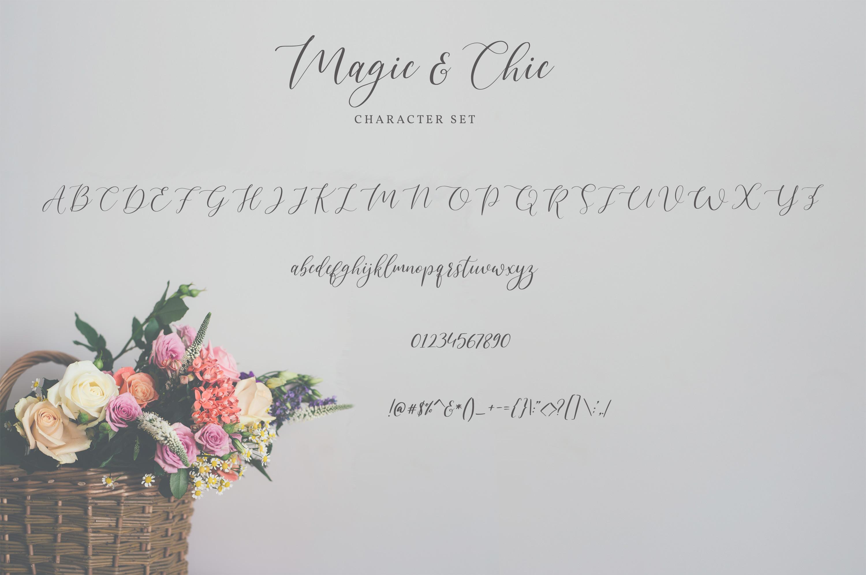 Magic & Chic Script Font example image 5