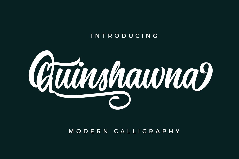 Quinshawna Font Script example image 6