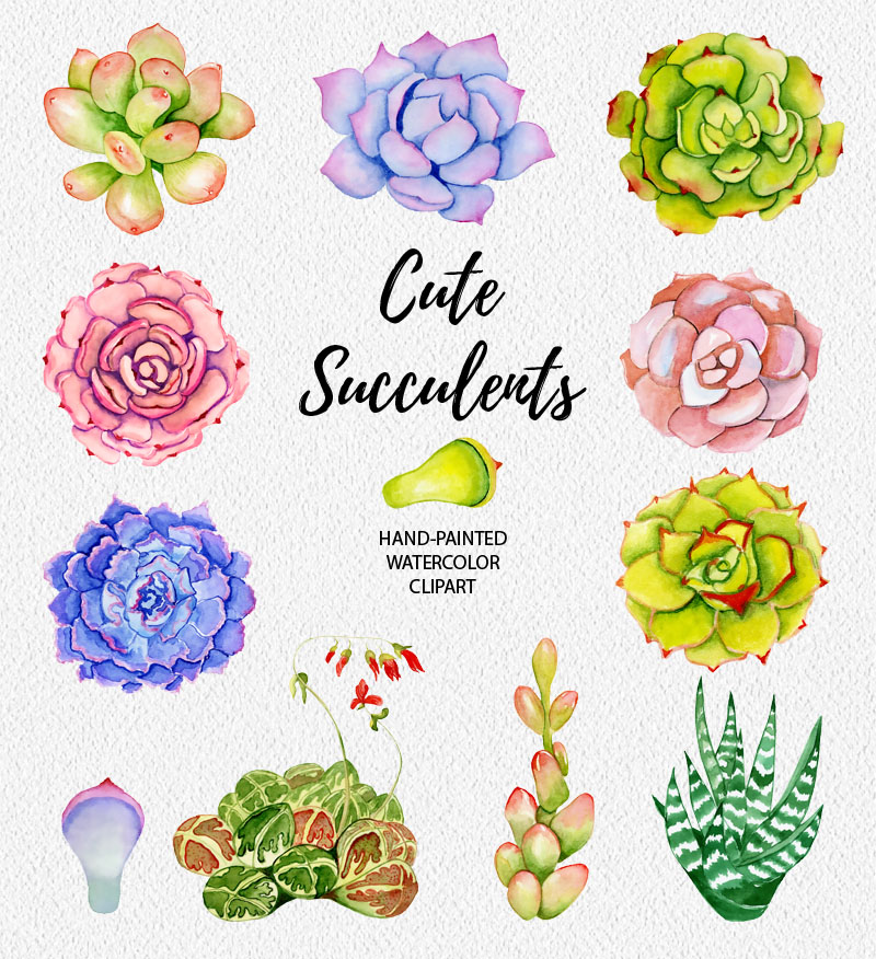 Succulents watercolor clipart example image 2