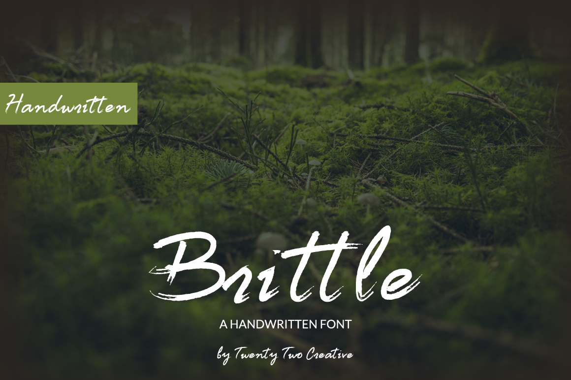 Brittle - a handwritten nature inspired font example image 1