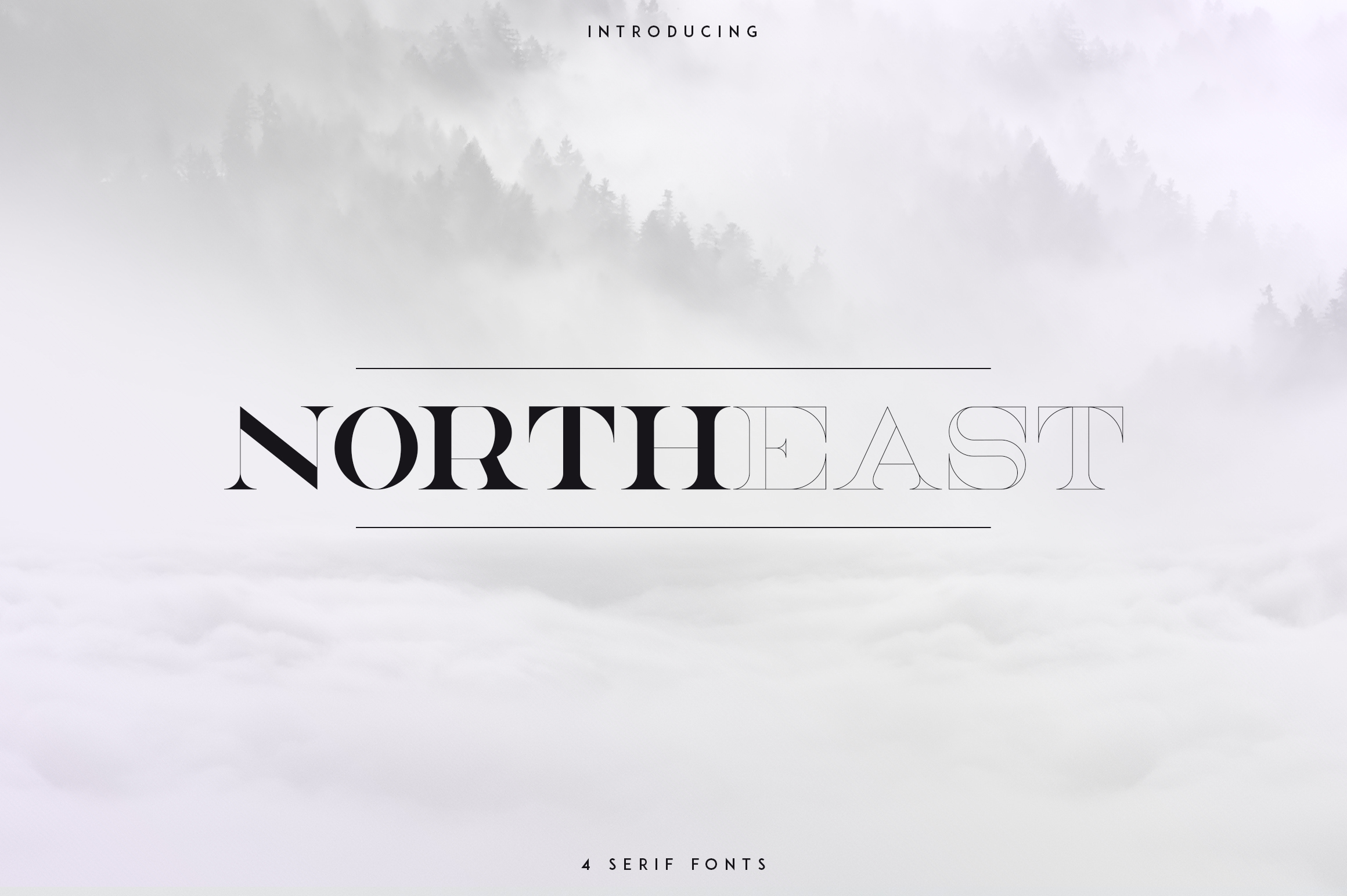 NorthEast - 4 serif fonts example image 1