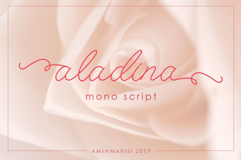 ALADINA example image 1