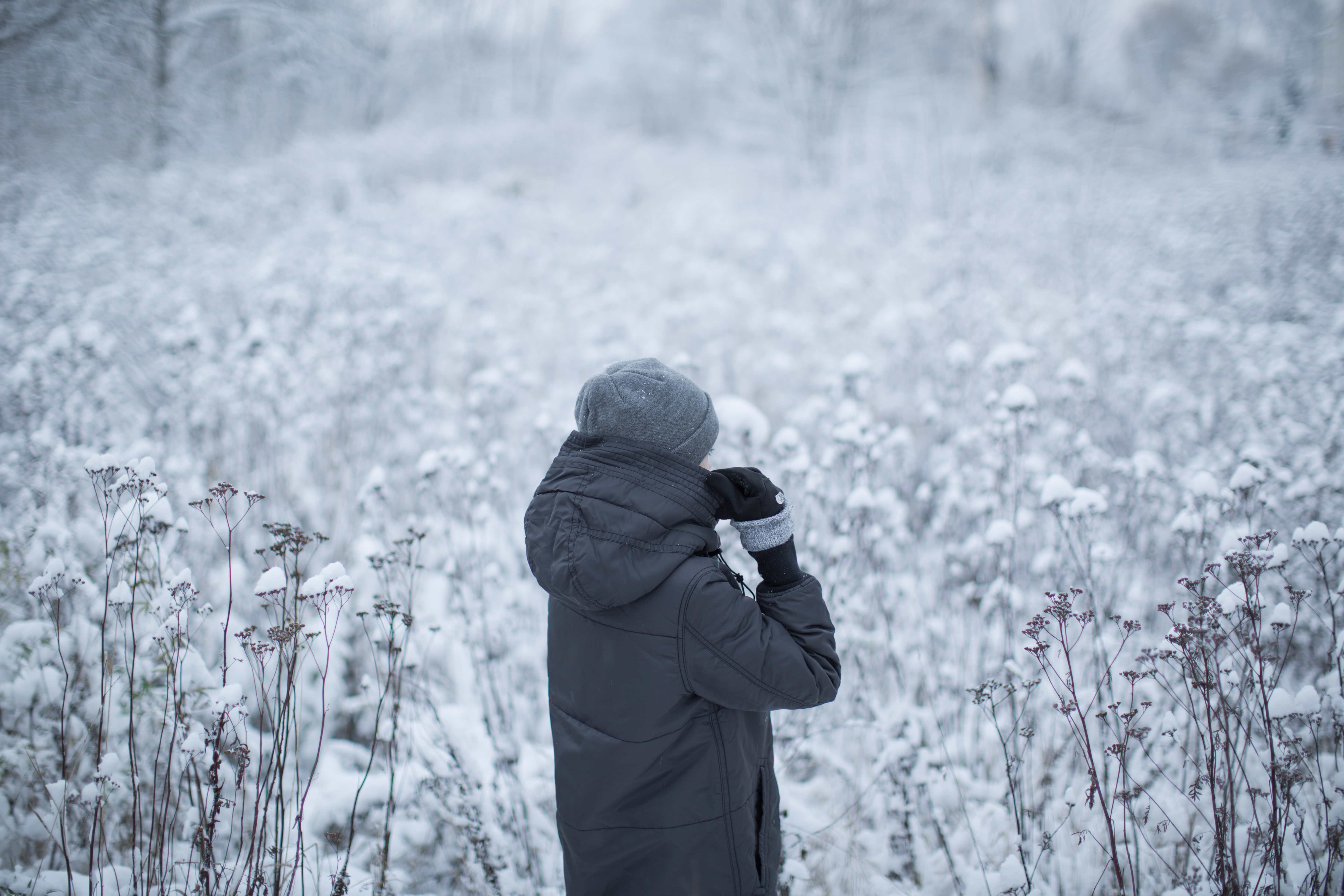Girl walking in the winter forest example image 1