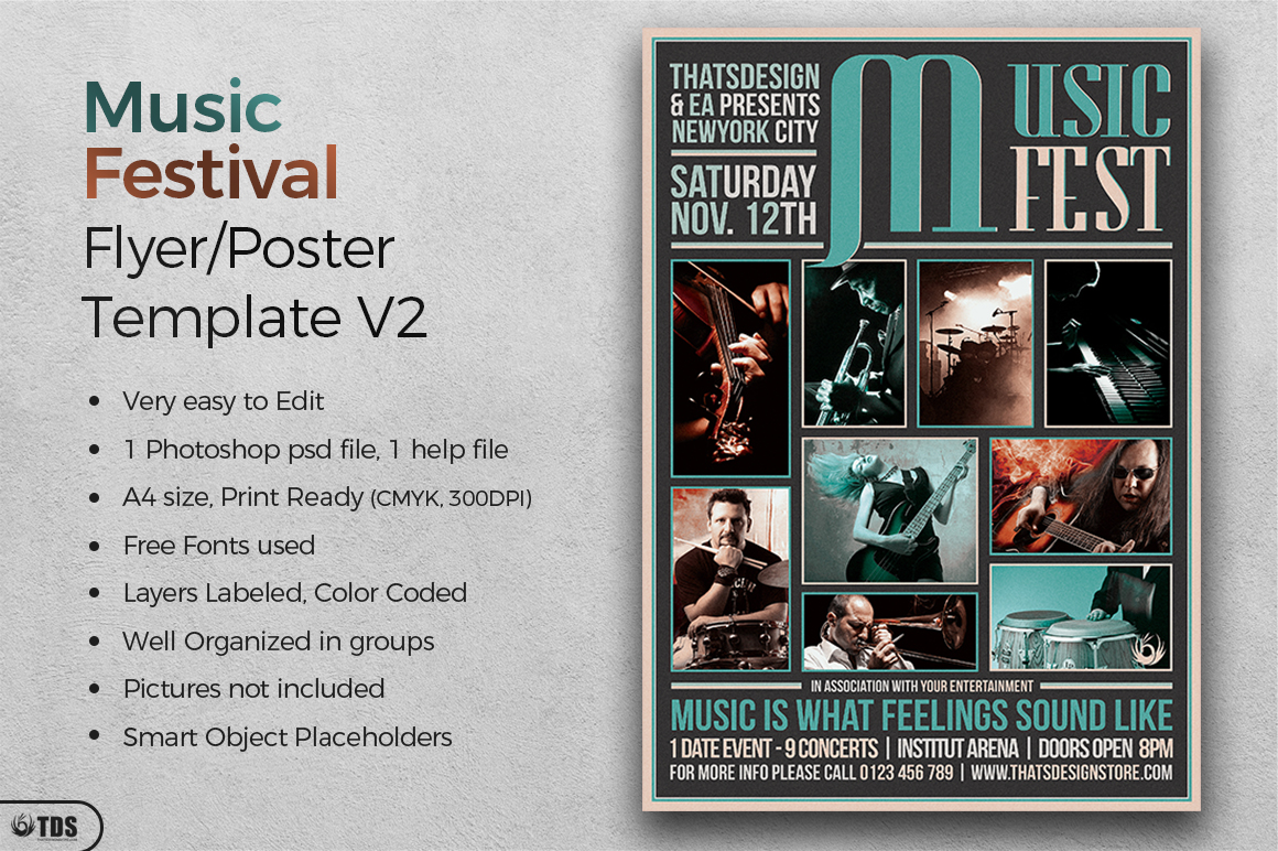 Music Festival Flyer Template V2 example image 2