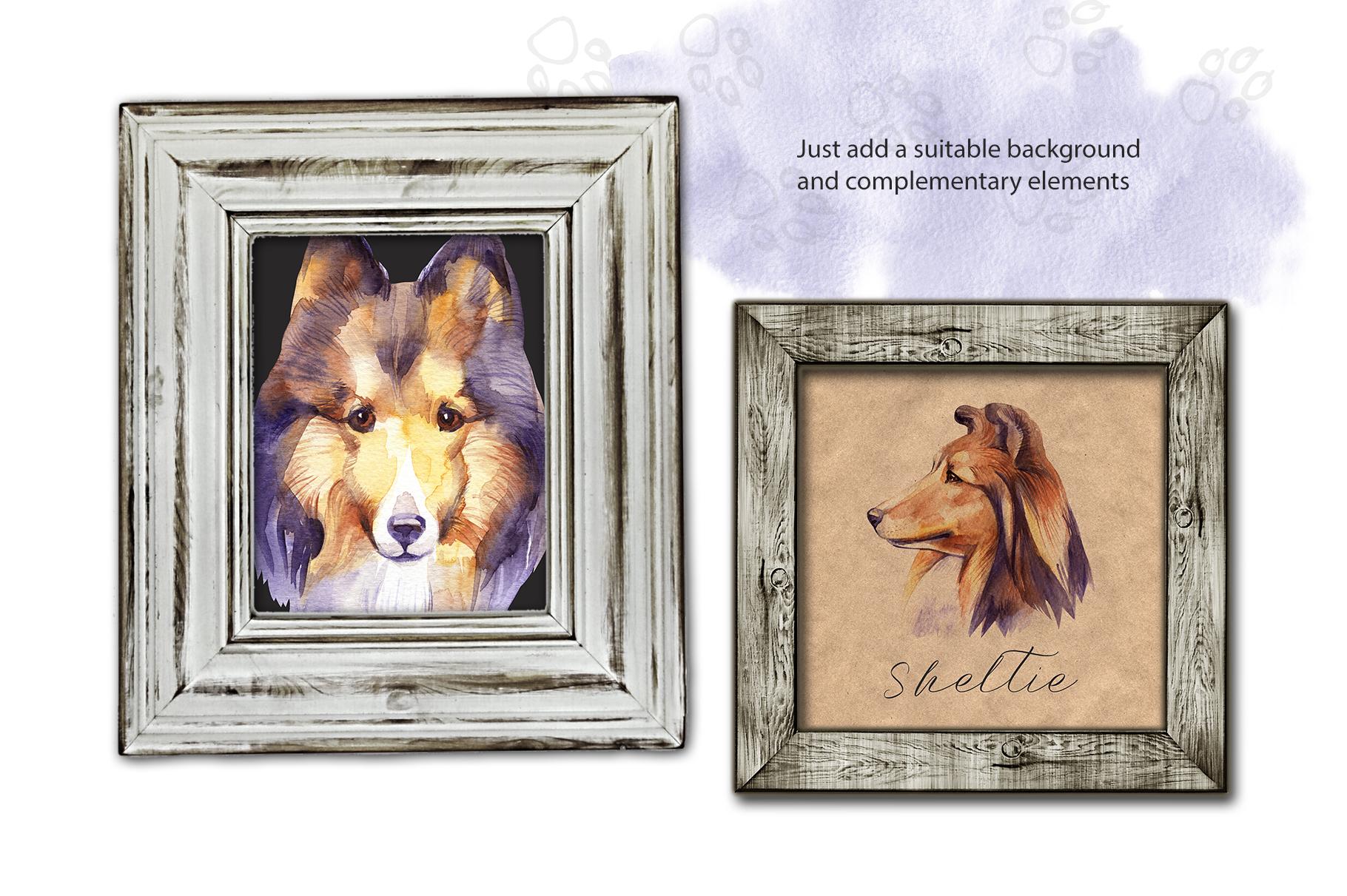 Watercolor dog - Sheltie example image 3