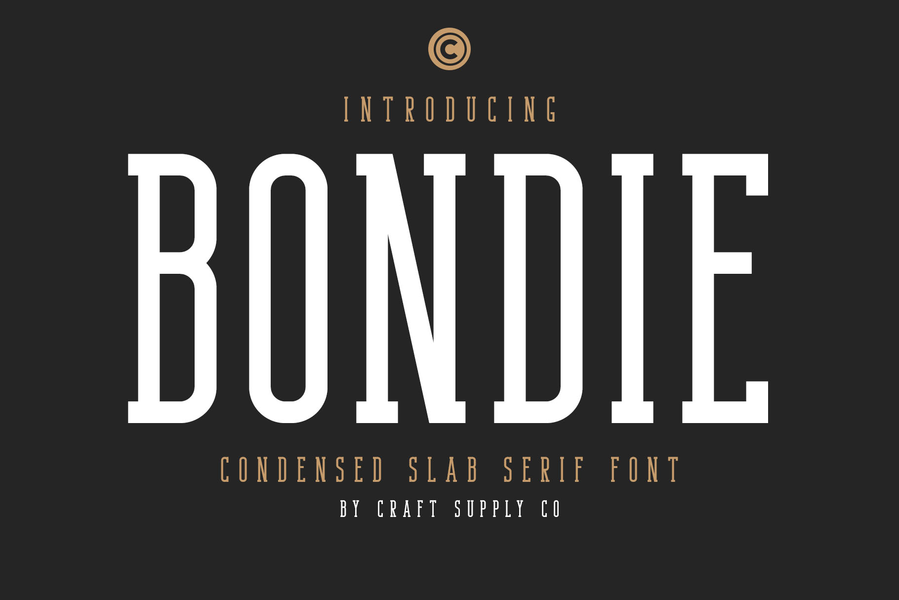 Bondie - Condensed Slab Serif Font example image 1