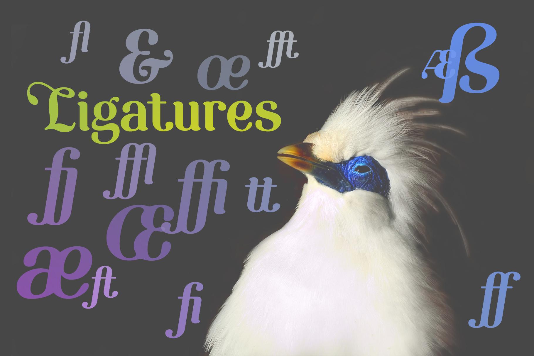 Etewut Serif example image 5