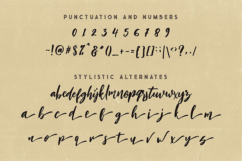 Charlie Script Font example image 7