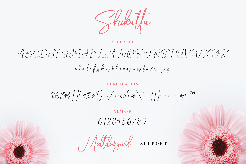 Shikatta - Signature Font example image 5