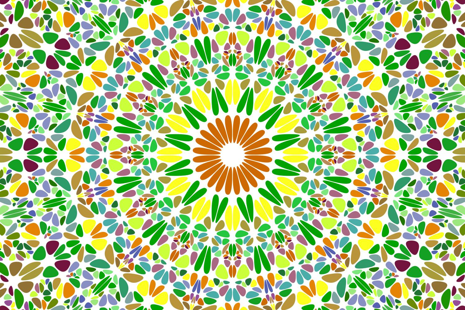 48 Floral Mandala Backgrounds example image 19
