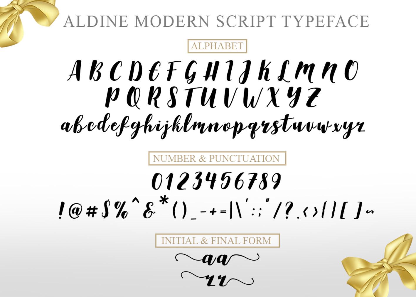 Aldine Script example image 8