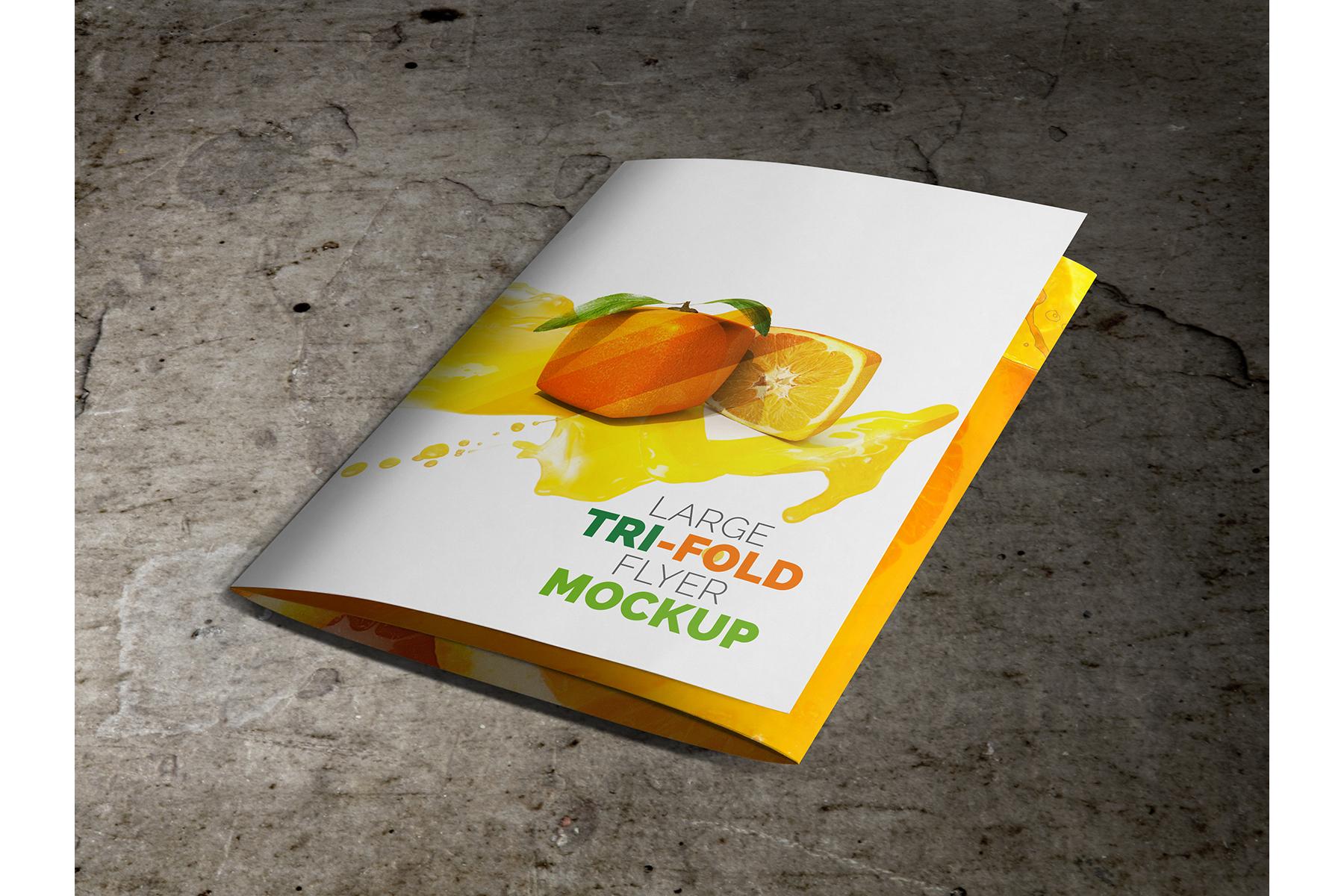 Large Trifold Brochure Mockup example image 6
