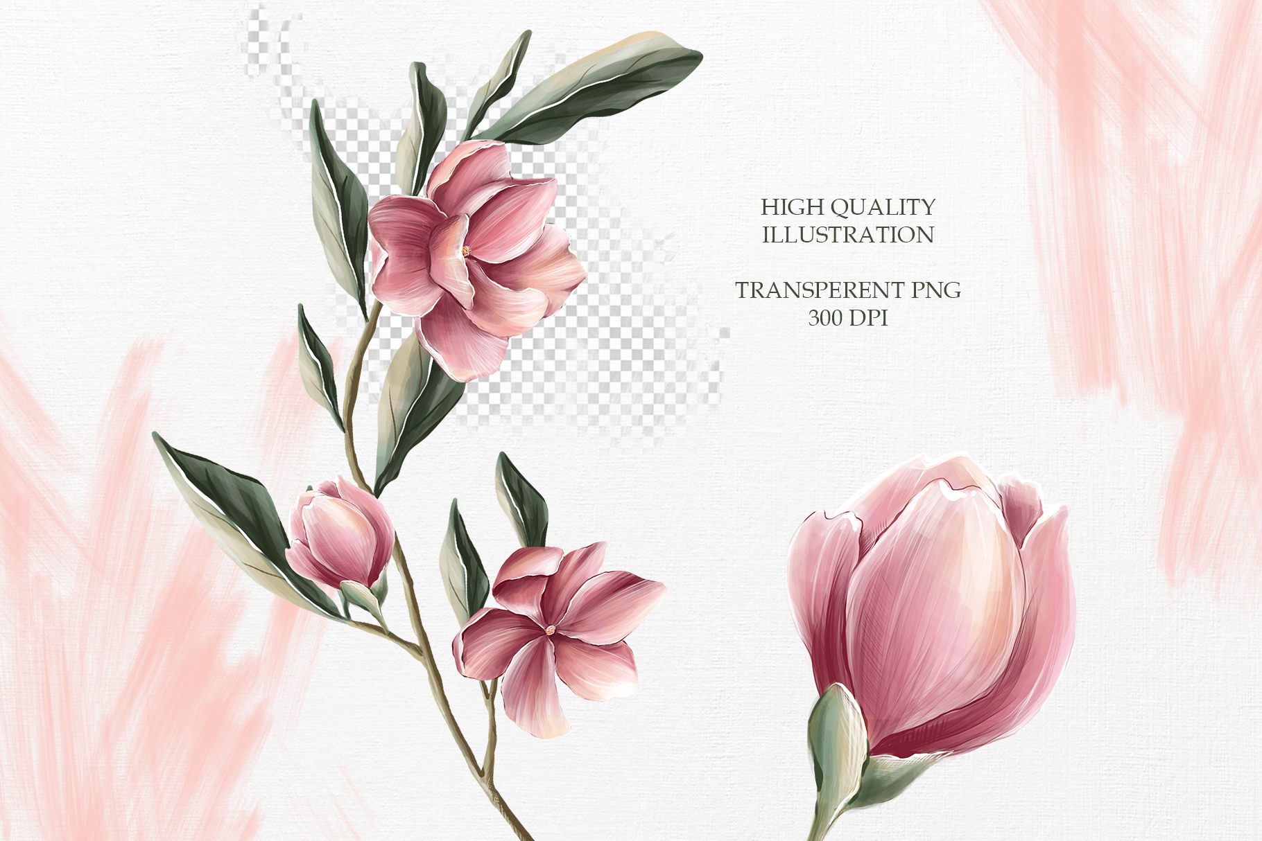 Magnolia bloom Collection example image 6