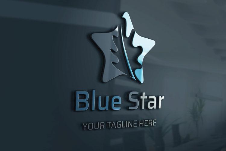 Star Shape Logo Design example image 3
