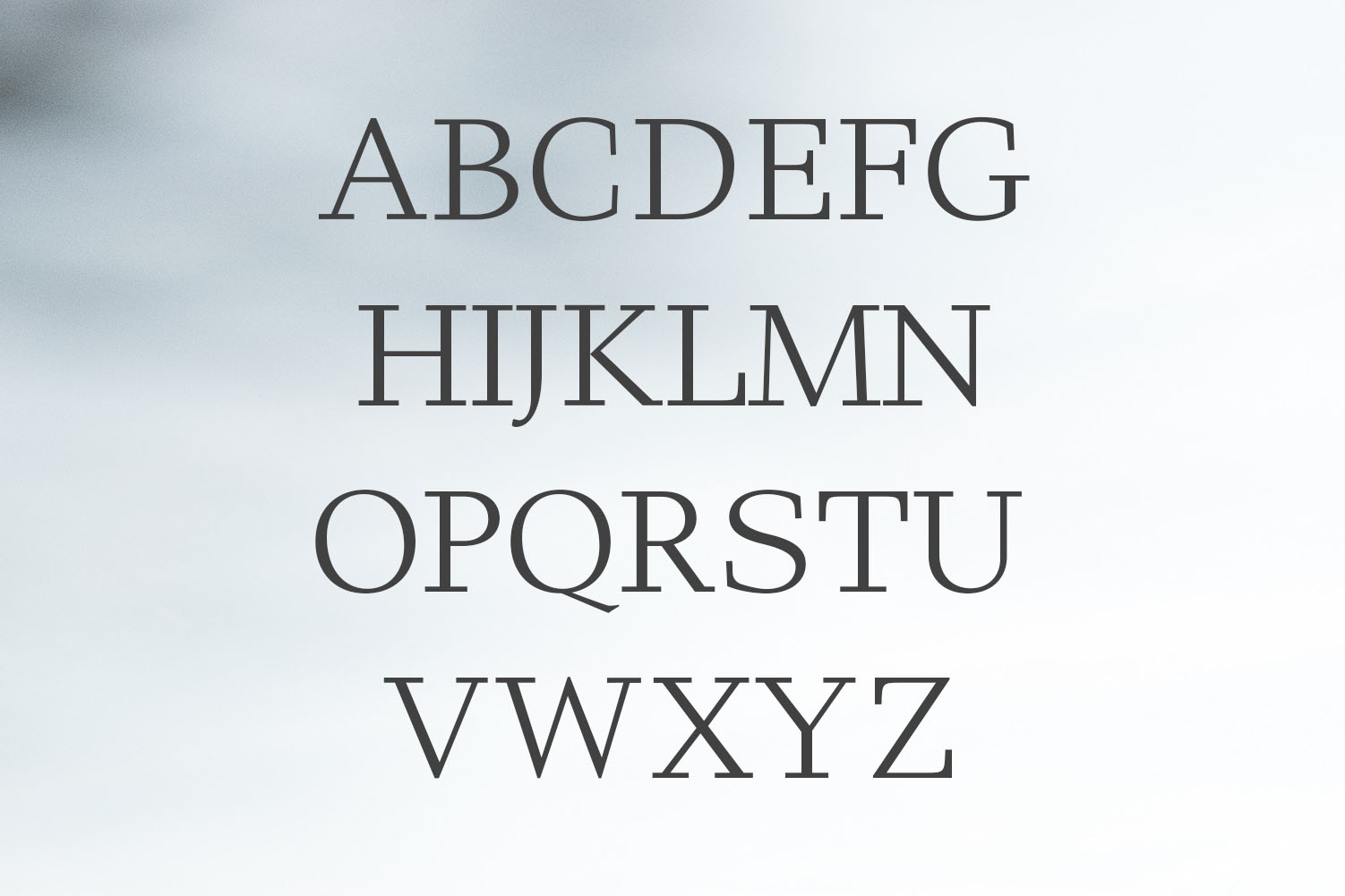 Haddie Modern Serif Font Family example image 2