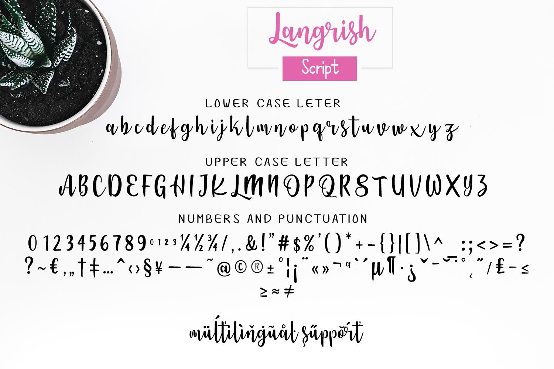 Langrish Font Duo example image 2