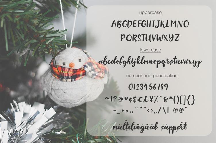 Snow Globe | A Handwritten Script Font example image 4